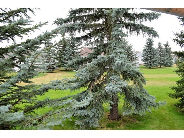 207 FREEMAN WY NW - High River Golf Course Semi Detached for sale, 1 Bedroom (C4138285) #27